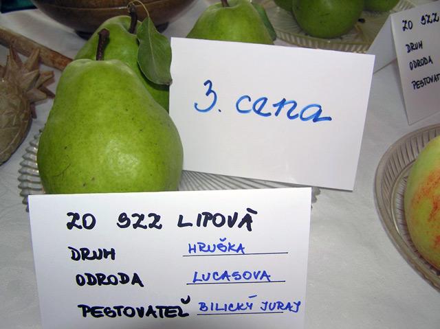 PA060085